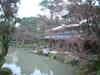 DSCFhakusa0197