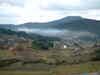 Dscfasamoya0167